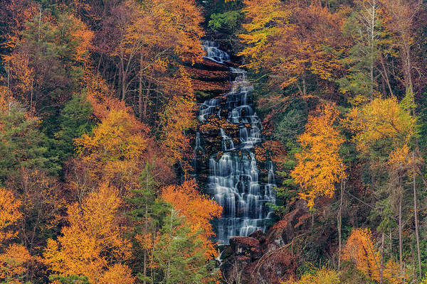 Wall Art - Photograph - Elakala Falls In Blackwater Falls State by Chuck Haney