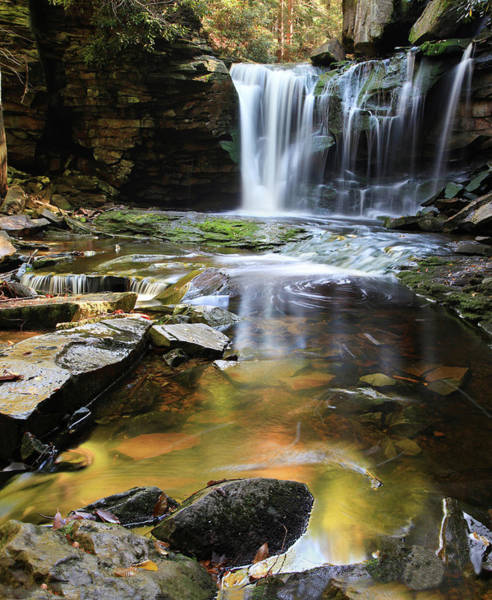 Blackwater Wall Art - Photograph - Elakala Falls by Photography By Deb Snelson