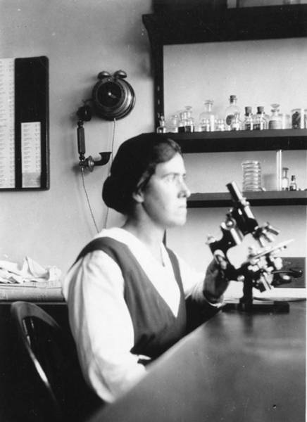 Wall Art - Photograph - Eleanor Carothers, American Geneticist by Science Source
