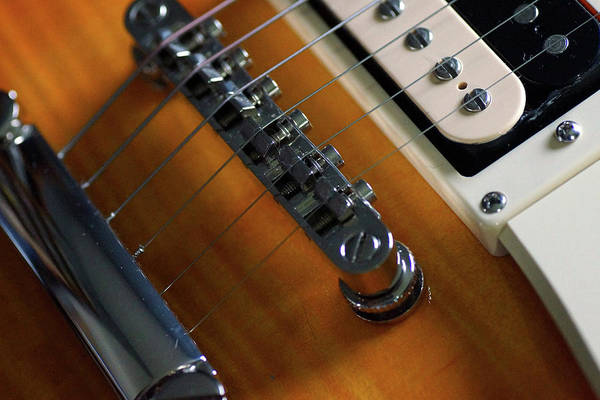 Photograph - Electric Guitar Close-up by Mike Murdock
