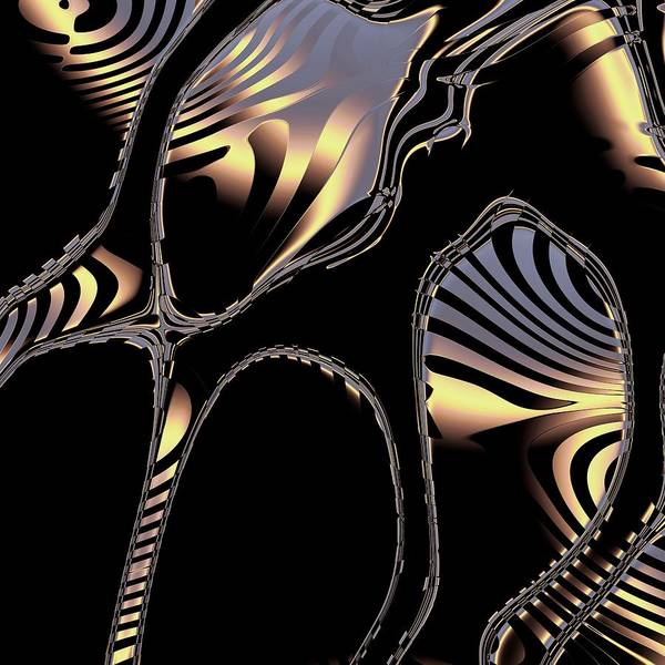 Digital Art - Elegant Black Fractal 1 by Judi Suni Hall