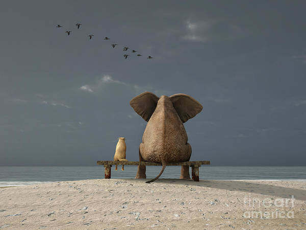 Wall Art - Digital Art - Elephant And Dog Sit On A Beach by Photobank Gallery