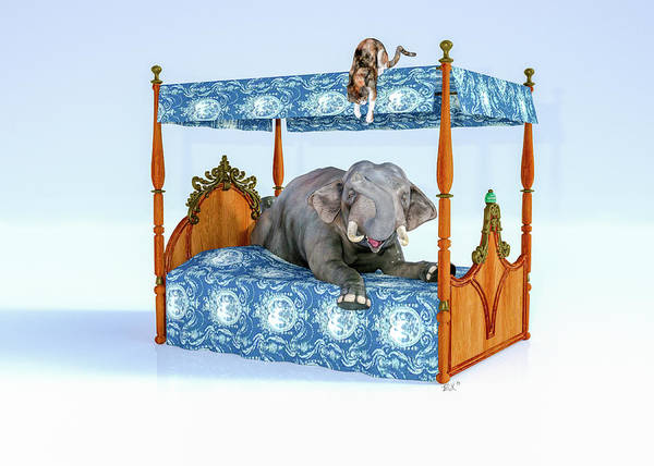 Wall Art - Digital Art - Elephant And Miss Kitty Peek A Boo by Betsy Knapp