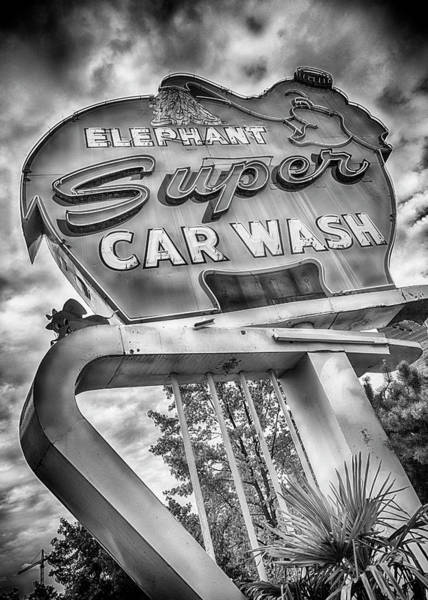 Wall Art - Photograph - Elephant Car Wash - #2 by Stephen Stookey