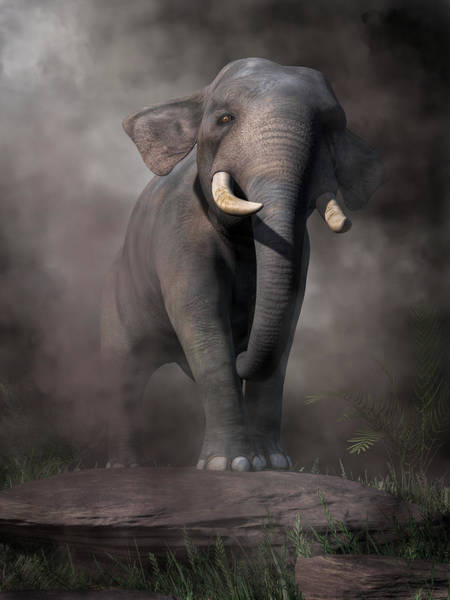 Digital Art - Elephant by Daniel Eskridge
