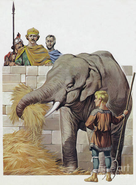 Curiosity Painting - Elephant, Given To Charlemagne By Harun Al Rashid, Caliph Of Baghdad  by Angus McBride