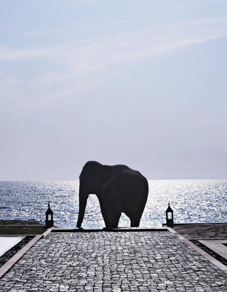 Out Of Context Photograph - Elephant Statue On Cobbled Walkway by Niels Busch