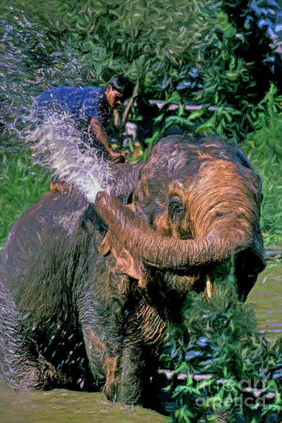 Behaviour Digital Art - Elephant Fun by Ric Holland