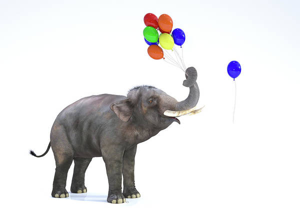 Wall Art - Digital Art - Elephant With Balloons by Betsy Knapp
