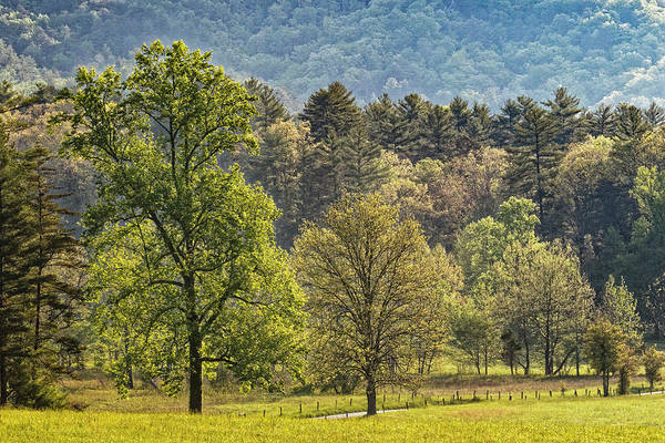Wall Art - Photograph - Elevated View Of Cades Cove by Adam Jones