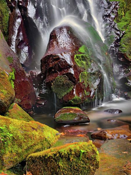 Wall Art - Photograph - Elk Creek Falls by Leland D Howard