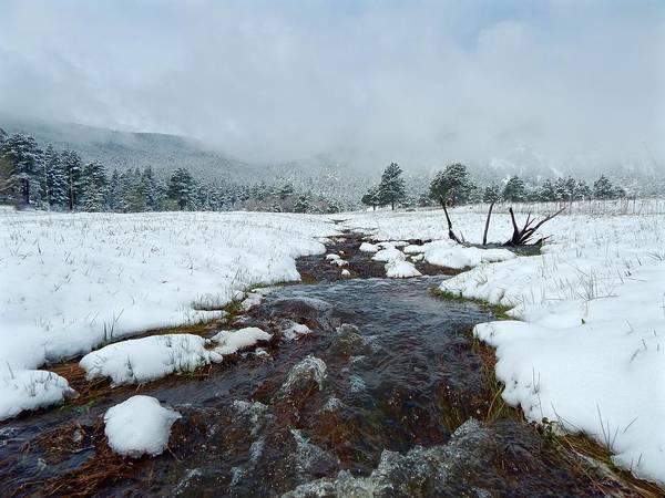 Photograph - Elk Creek Runoff by Dan Miller