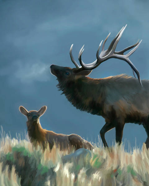 Digital Art - Elk On An Autumn Morning by Mark Miller