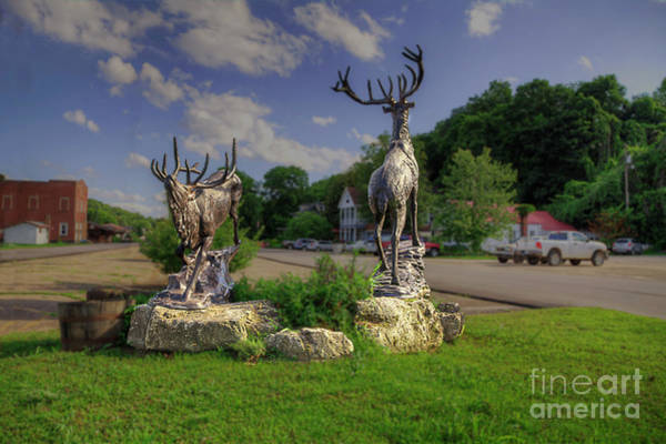 Wall Art - Photograph - Elk Sulptures  by Larry Braun