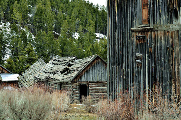Photograph - Elkhorn Remnant by Kae Cheatham
