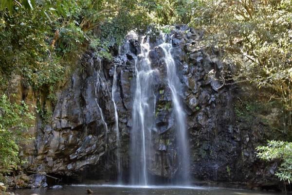 Atherton Tablelands Photograph - Ellinjaa Falls by Flo McKinley