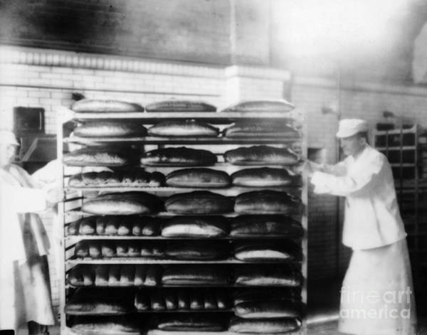Photograph - Ellis Island Bakers by Granger