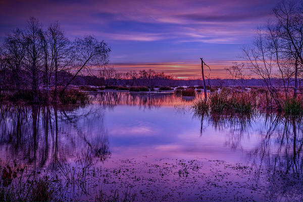 Photograph - Elm Lake 3 by David Heilman