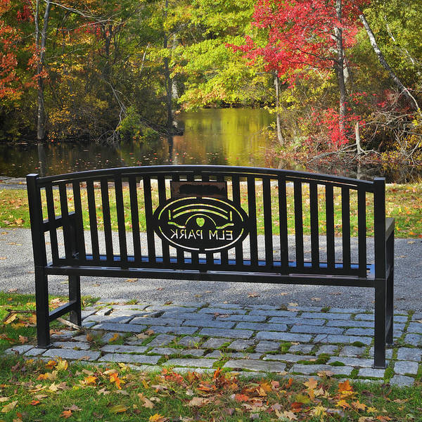 Photograph - Elm Park Autumn Bench by Luke Moore