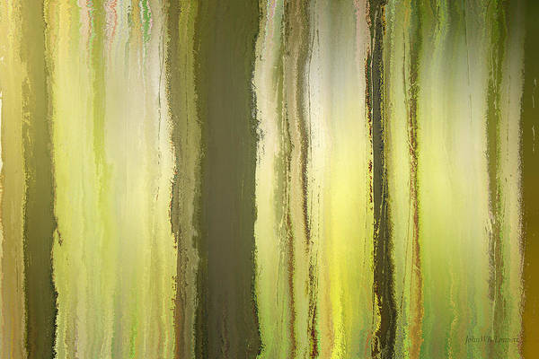 Mixed Media - elven forest III by John Emmett
