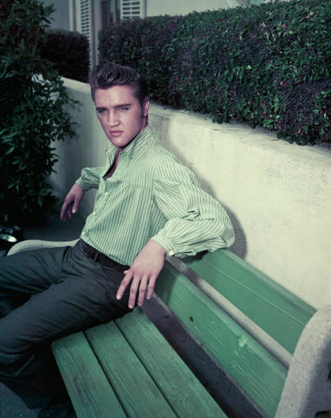 Photograph - Elvis Presley by Archive Photos