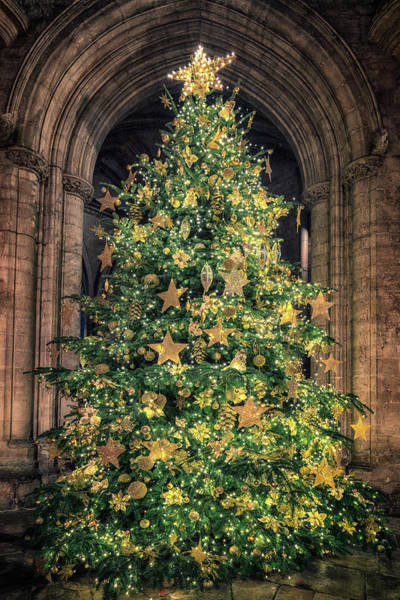 Ely Cathedral Christmas Tree 2018 Art Print