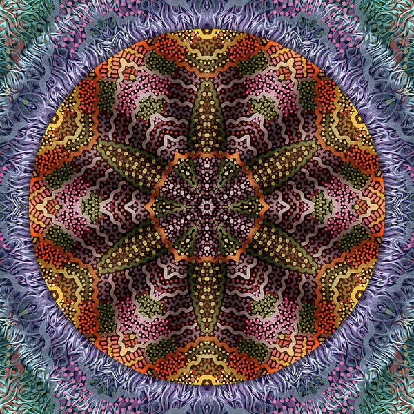 Digital Art - Embellishment by Becky Titus