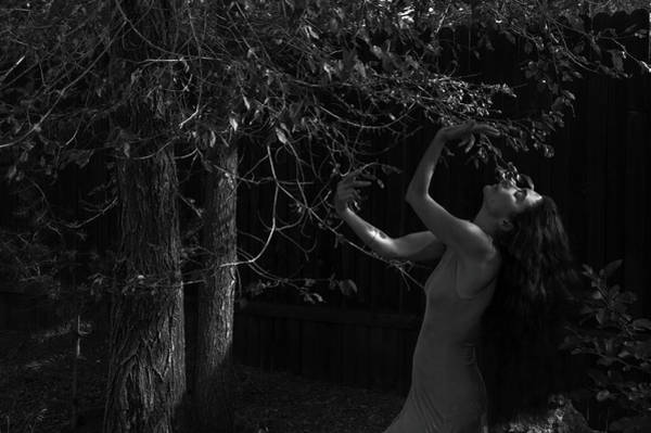 Photograph - Embracing Nature by Catherine Sobredo