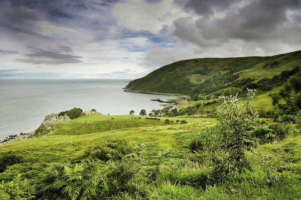 In The Grass Photograph - Emerald Isle by The Edge Digital Photography