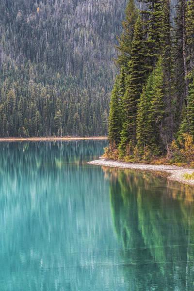British Columbia Photograph - Emerald Lake Portrait by Chris Fletcher