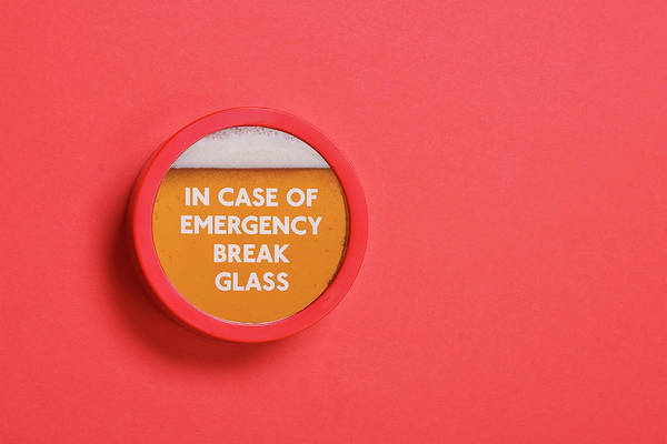 Coral Photograph - Emergency Beer by Andrew Paterson