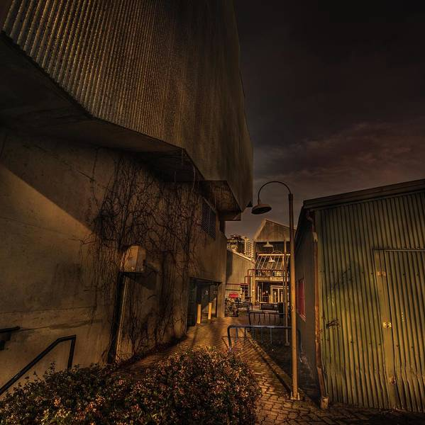 Photograph - Emily Carr Alley by Juan Contreras