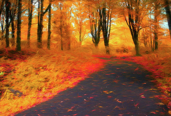 Digital Art - Emmaus Community Park Path - Colors Of Fall by Jason Fink