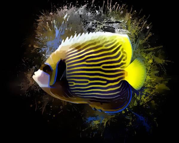 Digital Art - Emperor Angelfish Portrait by Scott Wallace Digital Designs
