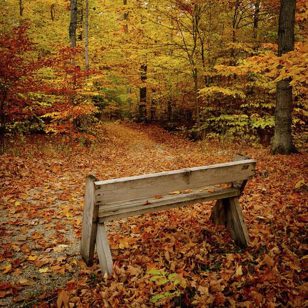 Photograph - Empty Bench by David Heilman