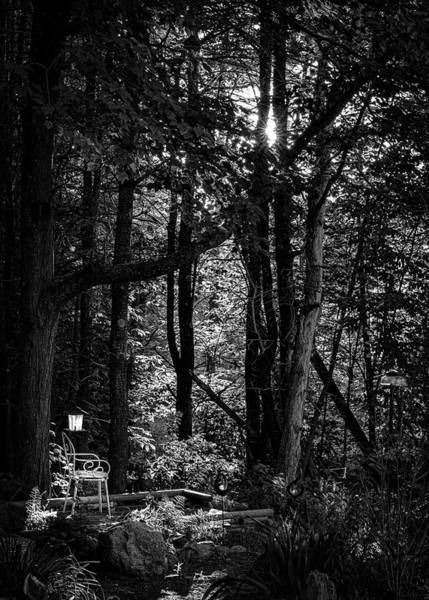 Photograph - Empty Chair And Bird Feeder by Bob Orsillo