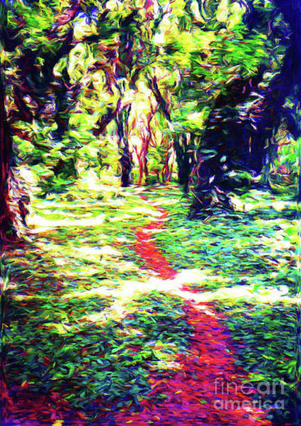 Wall Art - Photograph - Enchanted Forest by Jerome Stumphauzer
