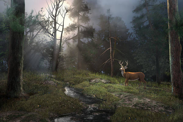 Digital Art - Enchanted Forest by Mary Almond