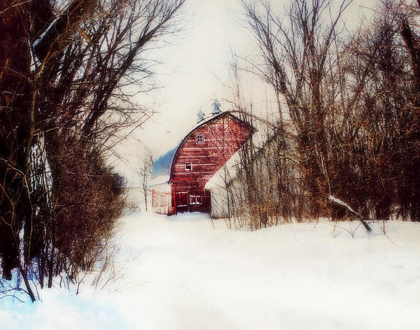 Photograph - End Of The Line by Julie Hamilton