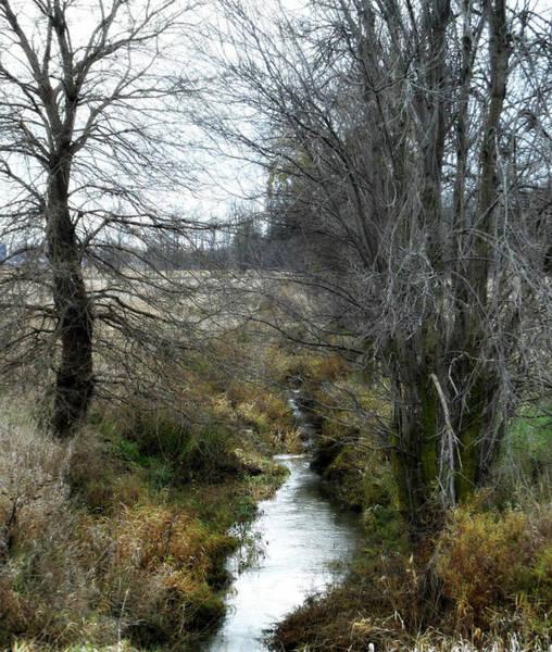 Photograph - End Of The River by Cyryn Fyrcyd