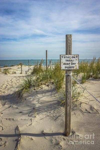 Wall Art - Photograph - End Of The Trail by Colleen Kammerer