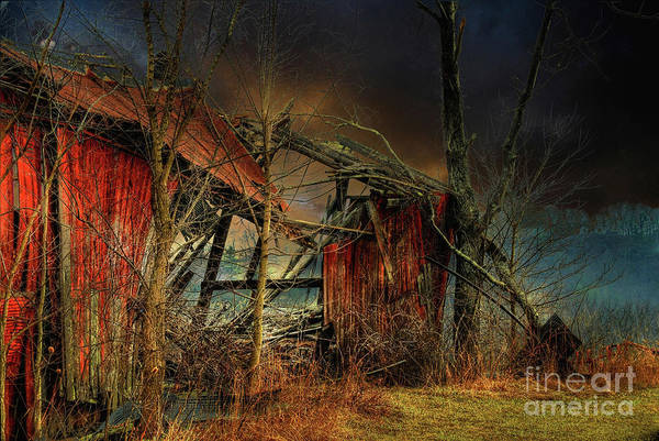 Photograph - End Times by Lois Bryan