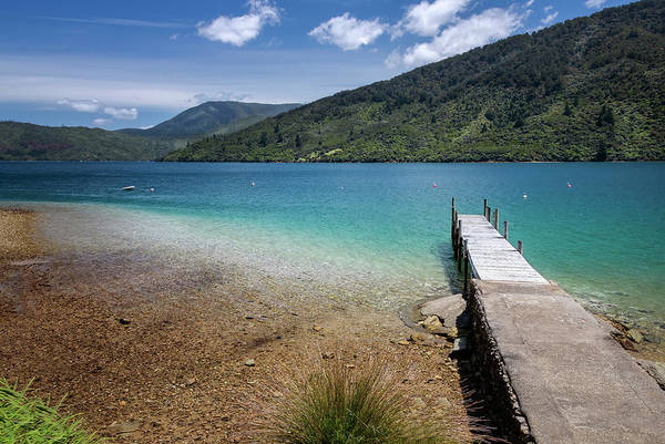 Wall Art - Photograph - Endeavour Inlet New Zealand II by Joan Carroll
