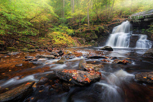 Photograph - Enders Falls Autumn 3 by Bill Wakeley