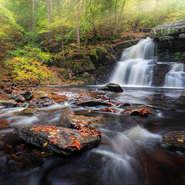 Photograph - Enders Falls Autumn 3 Square by Bill Wakeley