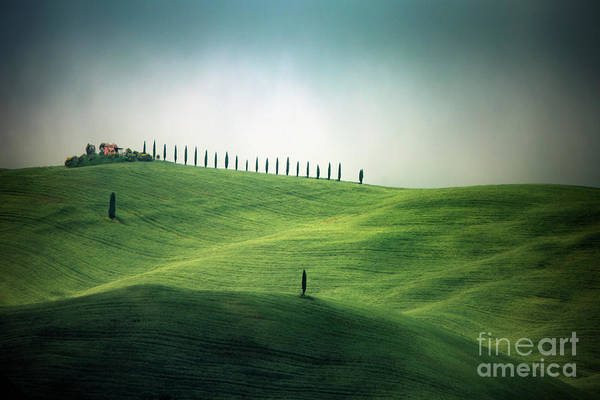Wall Art - Photograph - Endless Hills by Evelina Kremsdorf