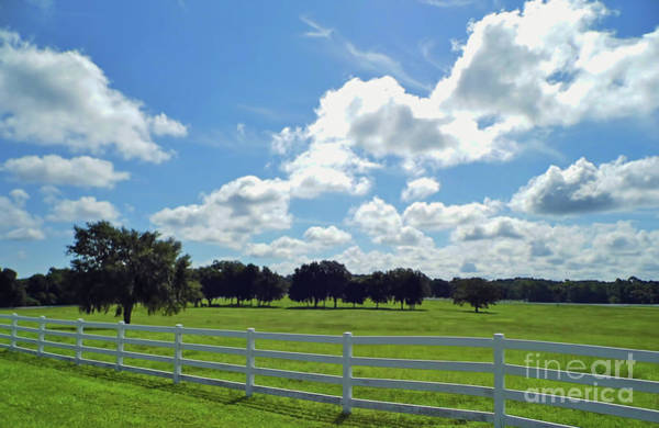 Photograph - Endless Sky At The Farm by D Hackett