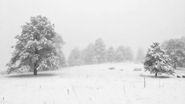 Photograph - Endless Winter by Dan Miller