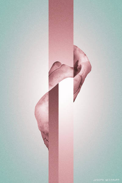 Photograph - Endobrume - Surreal Abstract Elephant Bone Collage With Rectangles by Joseph Westrupp