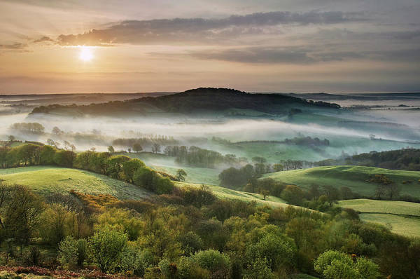 Fog Photograph - England, Dorset, The Marshwood Vale by Guy Edwardes